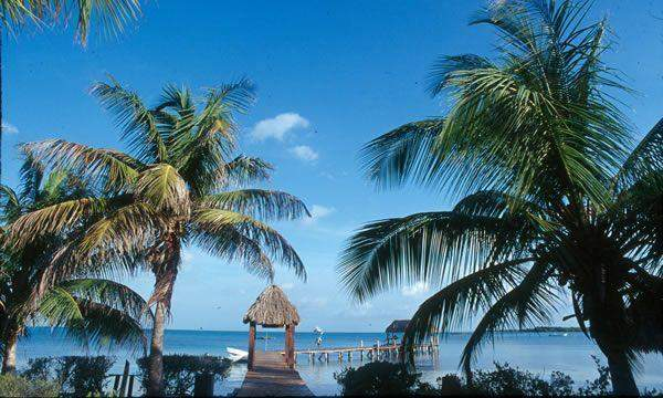 Contoy Island Asterix Tours Cancun