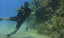 Buceo Discovery en Maroma Adventures