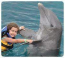 Dolphin Royal Swim Cozumel