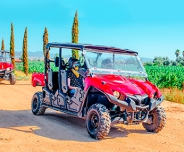 Baja Off Road Buggy Adventure