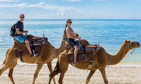 Camel Safari at Maroma Adventures