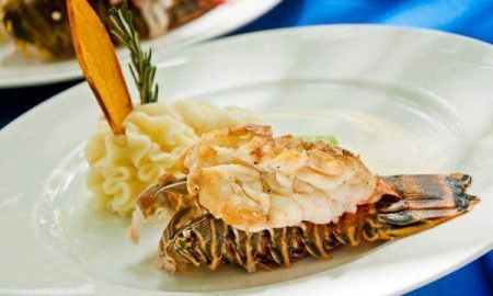 Deluxe Snorkel and Lobster at Maroma Adventures