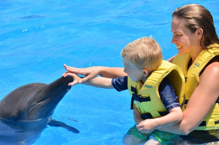 Dolphin Interactive Program (Dolphinaris Cancun)