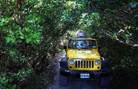 Island & Off Road by Jeep