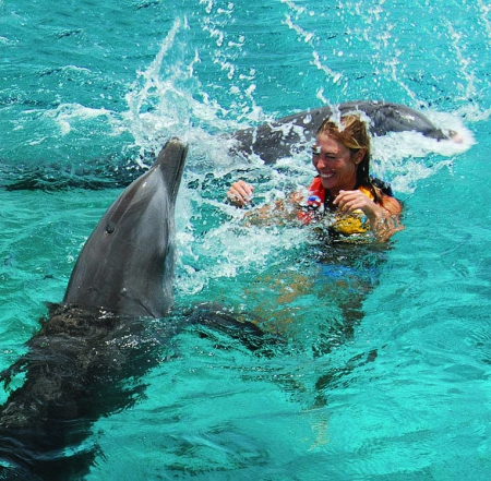 Dolphin Royal Swim / Dolphin Akumal