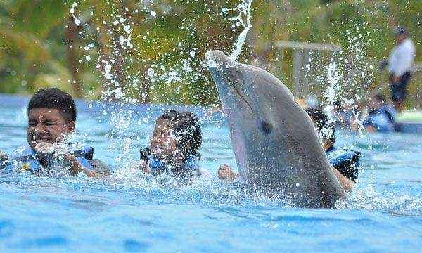 Dolphin Cat Swim Adventure at Maroma Adventures