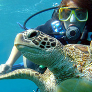 Scuba Diver Course at Maroma Adventures