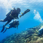 PADI Open Water Course at Maroma Adventures