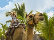 Camel Caravan Expedition