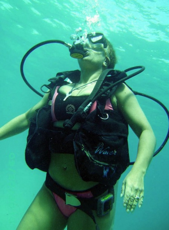 Buceo con Delfines (Dolphin Discovery)