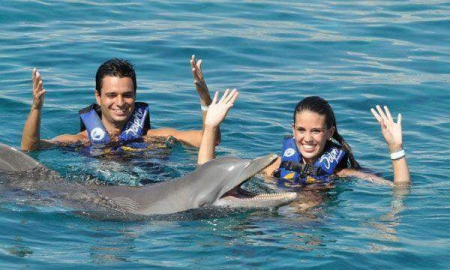 Dolphin Royal Swim Maroma