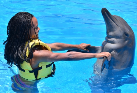 Dolphin Swim Program (Dolphinaris Park)