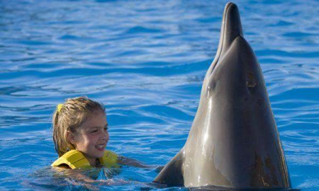 Dolphin Swim & Ride (Dolphinaris Cancun)