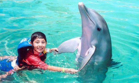 Royal Garrafon + Dolphin Swim Adventure
