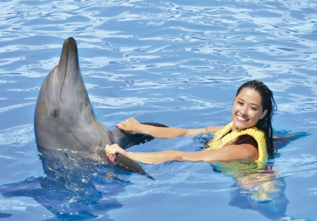 Trainer for a Day / Dolphinaris Park
