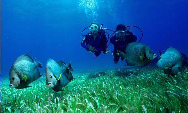 Discover Scuba Diving with Maroma Dive Center