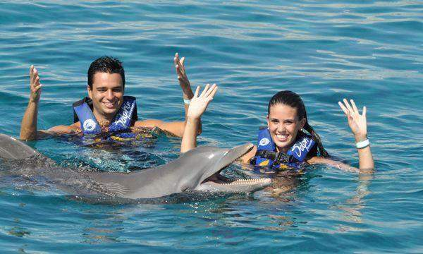 Dolphin Royal Swim VIP Cozumel
